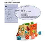 [US CPSC Certified] BATTOP Wooden Shape Sorter Preschool Educational Toy Color Shape Recognition Toy for Kids