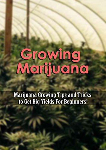 Growing Marijuana: Marijuana Growing Tips and Tricks to Get Big Yields For Beginners!