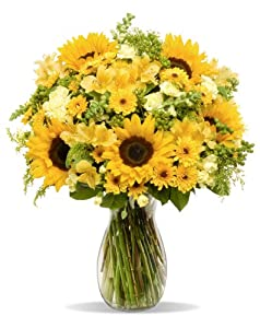 Rays of Sunshine - With Vase