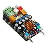 RioRand TA2021 Digital Amplifier DI