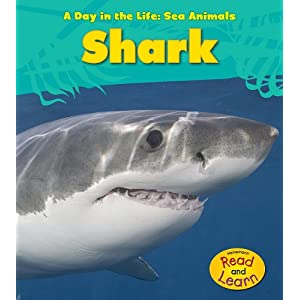 Shark (A Day in the Life: Sea Animals)