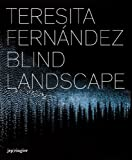 Teresita Fernandez: Blind Landscape