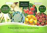 375 Vegetable Seeds: Leek/Broccoli/Parsnip/Tomatoes: Orange Pear/Tumbling Tom/Sweetie/MULTI-BUY DISCOUNT/6 in 1/Field & Vine Collection