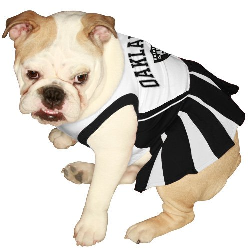 Oakland Raiders Halloween Costumes - Best Costumes for ...