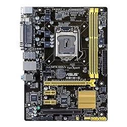 Asus Intel H81M-C Motherboard