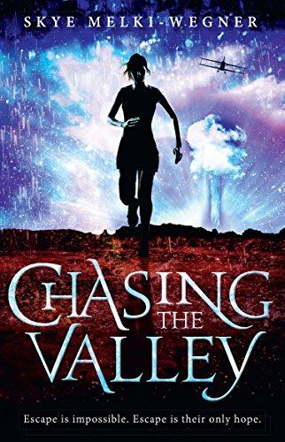 Chasing the Valley, by Skye Melki-Wegner