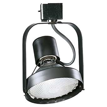 lightolier 9023 basic par30 ring track head track lighting heads. Black Bedroom Furniture Sets. Home Design Ideas