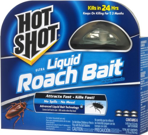 Got Scary Roaches Or Pests, You May Need Some Killing