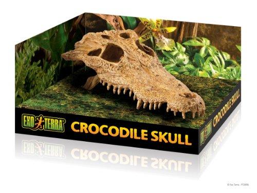 Exo Terra Crocodile Skull Terrarium Décor for