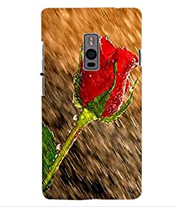 ColourCraft Beautiful Rose in Rain Design Back Case Cover for ONEPLUS TWO