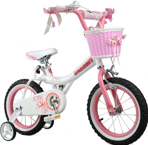 Big Save! Royalbaby Jenny Princess Pink Girls Bike with Training Wheels and Basket, Best Gifts for G...