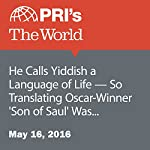 He Calls Yiddish a Language of Life - So Translating Oscar-Winner 'Son of Saul' Was an Especially Dark Experience | Daniella Cheslow