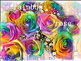 レインボーローズ 生花 10本 花束アレンジメント かすみ草付き 結婚祝い 結婚記念日 還暦祝い 誕生日プレゼント