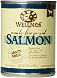 Wellness Natural Grain Free Wet Canned Dog Food, 95-Percent Salmon Recipe, 13.2-Ounce Can (Value Pack of 12)