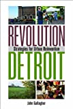 Revolution Detroit: Strategies for Urban Reinvention (Painted Turtle)