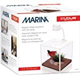 Marina Betta Kit Aquarium, Würfelform, Glas, mit LED-Leuchte, 3,4l