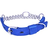 Paws For A Cause High Quality Nylon Choke Collar (Small, Blue)