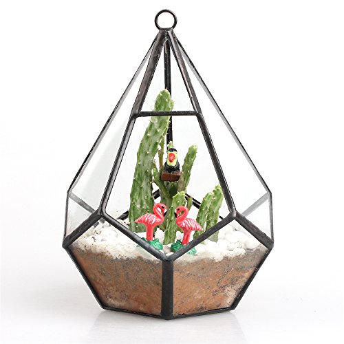 modern-artistic-clear-hanging-air-planter-tear-diamond-glass-geometric-terrarium-small-11cm-x-11cm-x