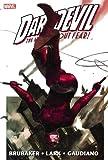 Daredevil Omnibus, Vol. 1