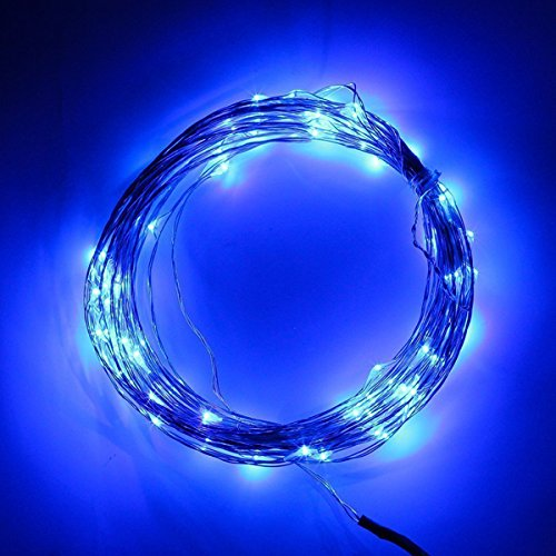 Foxnovo 10M /33Ft Dc12V 100-Leds Waterproof Copper Wire Starry Led String Lights With Power Adapter (Blue Light)