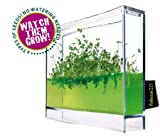 Globus Plantarium Super Educational Kit