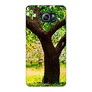 Green New Tree Back Case Cover for Galaxy Note 5