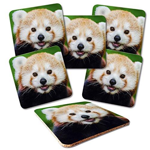 'ADDIES Dessous de Plat 6pièces Kit Imprimé Motif panda de verre 11présentée dans un coffret cadeau transparente et dos en liège