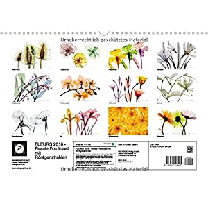 FLEURS 2016 - Florale Fotokunst mit Röntgenstrahlen (Wandkalender 2016 DIN A3 quer): Jenseits des L