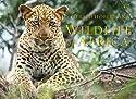 Wildlife of Africa: Dumpy Book (Gerald & Marc Hoberman Collection)