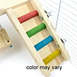 Alfie-Pet-by-Petoga-Couture-Ray-Wooden-Swing-Ladder-and-Resting-Platform-set-for-Small-Animals-Toy-for-Mouse-Chinchilla-Rat-Gerbil-and-Dwarf-Hamster