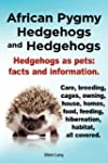 African Pygmy Hedgehogs and Hedgehogs...