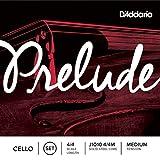 D\'Addario Bowed Jeu de cordes pour violoncelle D\'Addario Prelude, manche 4/4, tension Medium