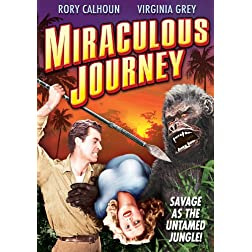 Miraculous Journey