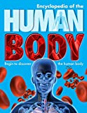 Steve Parker Encyclopedia of the Human Body: Begin to Discover the Human Body