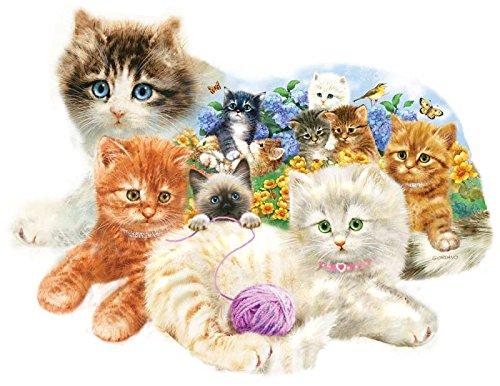 sunsout-a-litter-of-kittens-shaped-jigsaw-puzzle-1000-piece