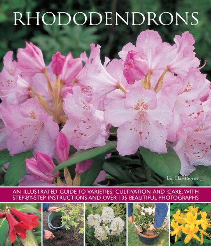 rhododendrons-an-illustrated-guide-to-varieties-cultivation-and-care-with-step-by-step-instructions-