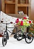 Onlineshoppee Wood Rickshaw Flower Holder , Black