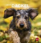 Dackel Postkartenkalender - Kalender...
