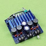 TDA7498 high power digital power am