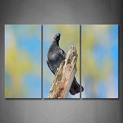 Pigeon Stand On Dry Wood Wall Art Painting Pictures Print On Canvas Animal The Picture For Home Modern Decoration