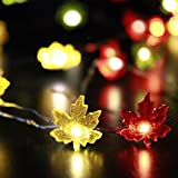 Maple Leaves Fairy String Lights - Impress Life 50 LEDs 10ft Copper Wire with Remote for Outdoor, Indoor, Thanksgiving, Christmas, Birthday Parties Decorations