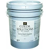 - CS46W0840-20 Color Solutions Self-Priming Latex Interior Ceiling Paint