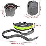 Dog Leash ,Mengar Hands Free Dog Leash Running Dog Leash Lightweight Reflective Bungee Dog Leash with Pouch and Waist Bags
