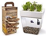 Hydro Galaxy Combo: AquaFarm & Mushroom Farm