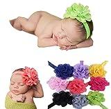 Quest Sweet 10 Pieces Babys Headbands Girls Headband Head Wear Flower,a Great Gift for Christmas