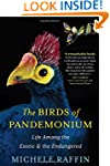 The Birds of Pandemonium