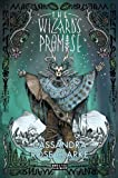 img - for The Wizard's Promise (Strange Chemistry) by Clarke, Cassandra Rose (2014) Paperback book / textbook / text book