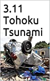 3.11 Tohoku Tsunami (English Edition)