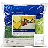 Fairfield WST20 Soft Touch Down-Like Pillowform 20 by 20-Inch
