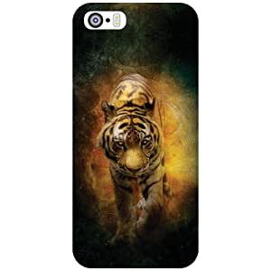 Apple iPhone 5S Back Cover - See Me Designer Cases